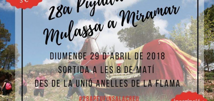 La Mulassa torna a pujar a la creu de Miramar